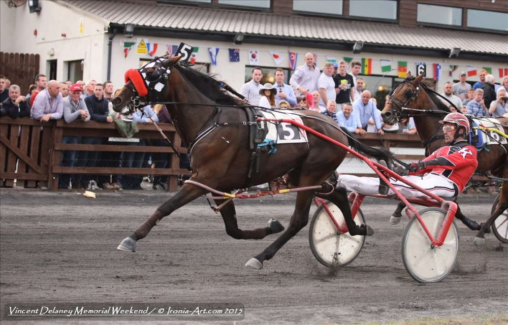 Vincent Delaney Memorial Winner 2015 (Colts & Fillies Mixed)